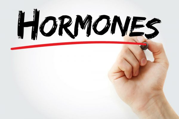 How Hormones Rule Our Lives